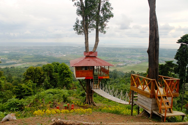 rumah pohon padang Nagari Pancuang Taba