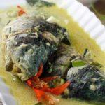 Resep Gulai Ikan Manganduang (Hamil/Sedang Bertelur) Khas Bukittinggi